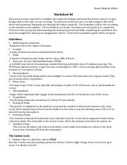 Worksheet4_CarbonCycle.docx