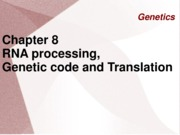 GENETICS chapter 8 - RNA processing