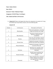 scie207 lab1 worksheet