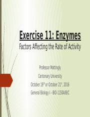Lab 7 Exercise 11 Enzymes