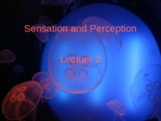 Sensation _ Perception - lecture 2 - psychophysics