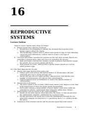 Chapter+16+-+Reproductive+Systems.doc