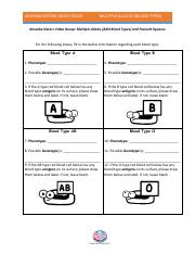 Worksheet Amoeba Sisters Video Recap Enzymes Answer Key ...