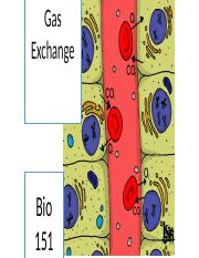 Gas exchange (1)
