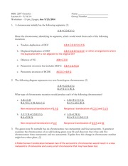 chromosome worksheet gene and chromosome mutation worksheet modern ...