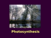 Unit 7_Photosynthesis.ppt
