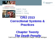 CRIJ 2313 - Chapter20 Power Point