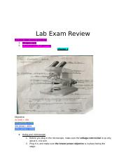 Lab Exam Review.docx