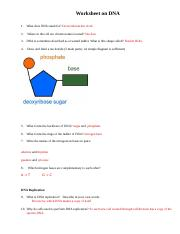 Virtual Lab Answer Key - Which colors of light spectrum ...