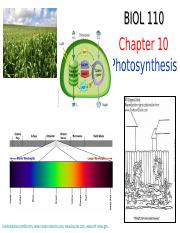 Chapter 10 - Photosynthesis-10-14-2015.ppt
