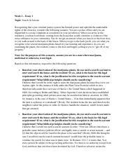 Criminal justice system essay