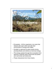 Ecosystems Notes