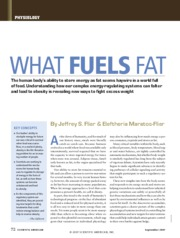 What Fuels Fat SciAm Article