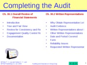 Comp the audit_AA_Ch_30