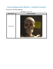 Axial and Appendicular Skeleton_RPT.pdf