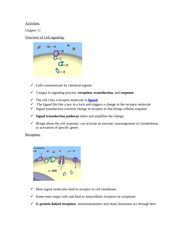 Cell Signaling Activity