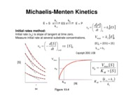 Lecture 11- Enzyme Kinetics