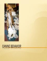 Ch. 12 Canine and Feline Behavior