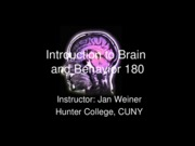 01 - Introduction to Brain and behav