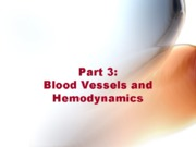 Bio 260 blood vessels and hemodynamics