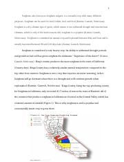 Sorghum final paper.docx