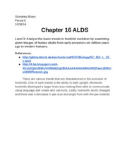 ALD Chapter 16