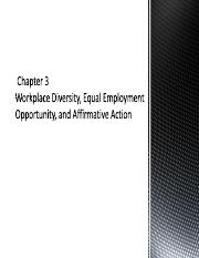 ch.3 Workplace+Diversity