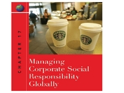 IB 385 Peng Chapter 17 (Corporate Social Responsibility)