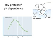 supplement hiv protease