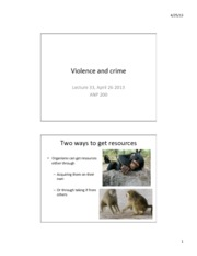 Lec 33 Violence and Crime
