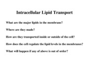Lipid transport