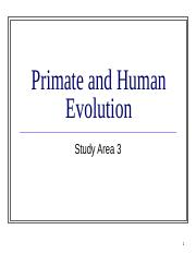 Human and Primate Evolution(4)_updated(2)