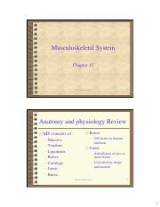 1001223_Musculosketal_System