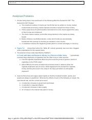 Ch 7 Analytical Problems.pdf