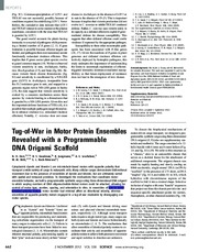 6.Tug-of-War in Motor Protein Ensembles