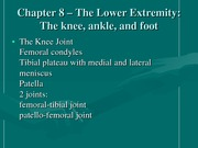 Kinesiology Chapter 8