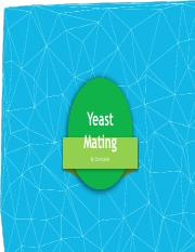 yeast mating christabel wang.pdf