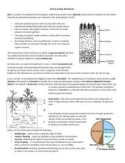 Soil Formation Worksheet - 1 Soil Formation Worksheet Read ...