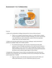 Assessment 6.1 Collaboration.docx