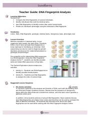 Student Exploration Dna Analysis Worksheet Answers ...