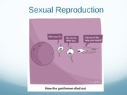 Reproduction (Lecture)