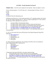 bacterial recombination essay View essay - bacterial conjugation from biology 120 at kenyatta university 1 running head: bacterial conjugation lab: the truth on gene.