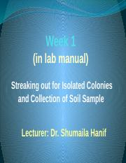 1st_Week_soil_isolation_awh (2)