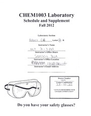 Lab Syllabus and Supplement
