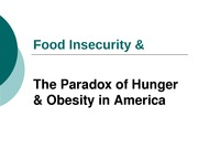food_securityx_hunger_x_obesity