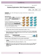 Gizmo 6 Revised - DNA Fingerprinting by Annie Limbana.doc