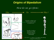 06 Origins of bipedalism_ANTH 122 Sp 2010.ppt #6
