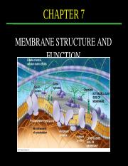 Lecture 8_Membrane structure and function_p.pptx