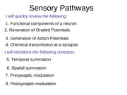 Sensory Pathways Part 1 (APs)