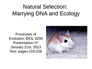 09 - Presentation #7 - Natural Selection - Marrying DNA and Ecology
